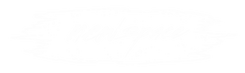 NewSpace Logo V2 White Transp.png