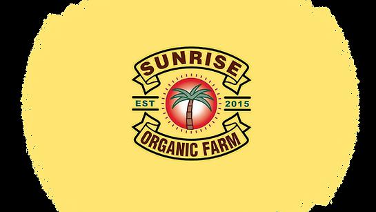 Sunrise Logo Strip 4.png