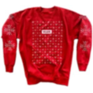 Red Sweater V2.png