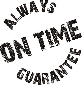 savvycleaner-com-always-on-time-guarante