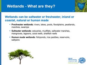 World Wetlands Day 2021