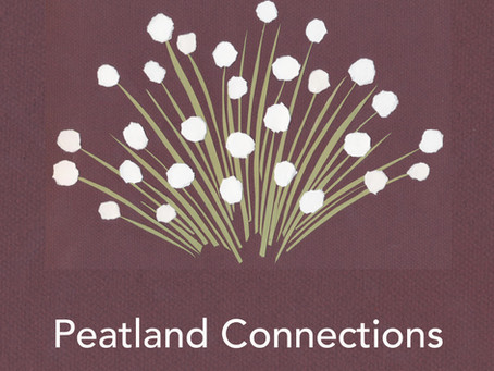 Introduction to Peatland Connections - VLOG