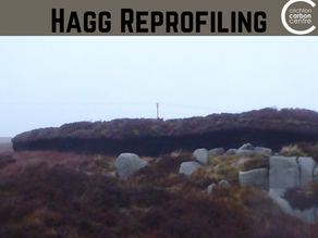 Technique of the Week: Hagg Reprofiling