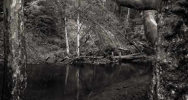 Creek-Bend-(Right).jpg