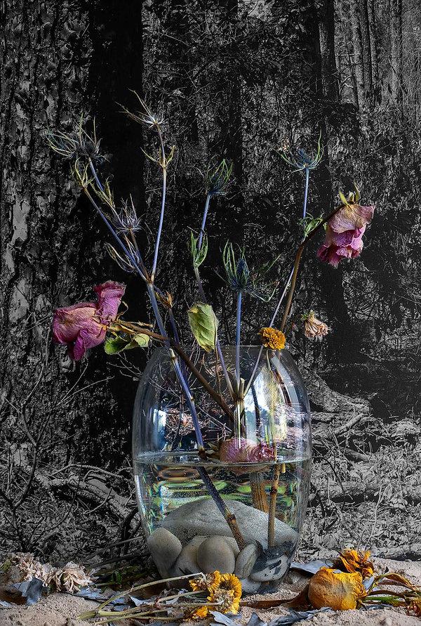 Spent-Flowers.jpg