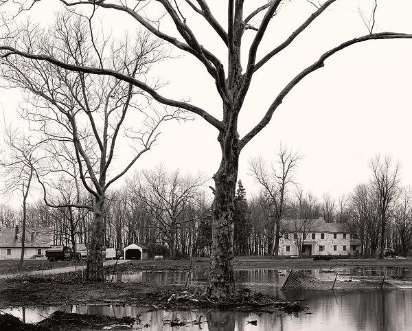 Floaying-Landscape.jpg