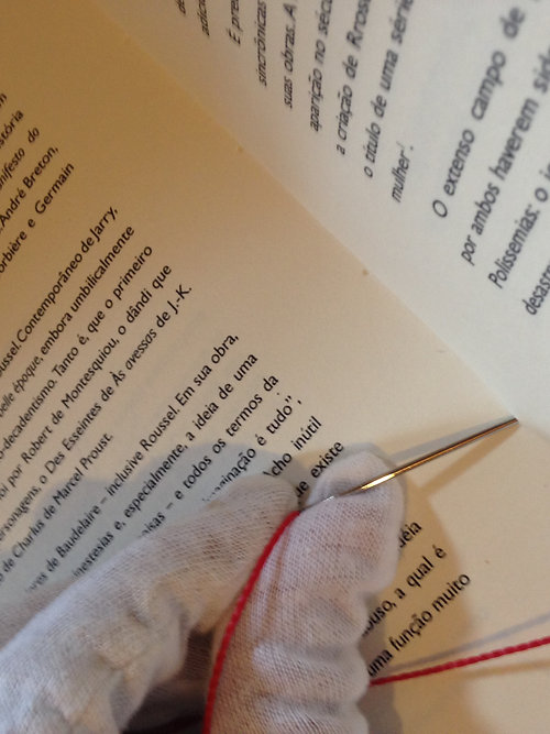 Como escrevi alguns dos meus livros [Raymond Roussel] - bilingue