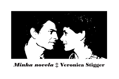 Minha novela { Veronica Stigger }
