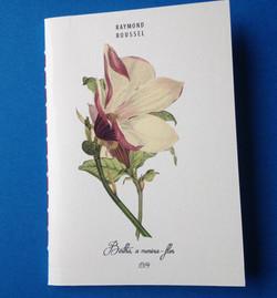 Bertha, a menina-flor { Raymond Rous