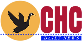 Daily news link, Canada Goose flying