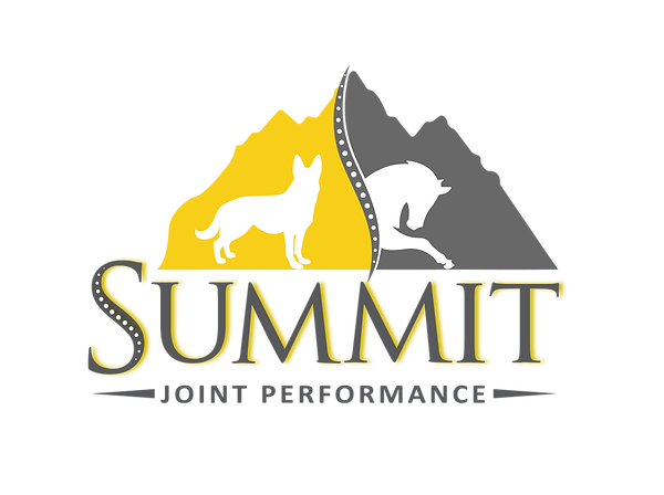 SummitLogo-02.png