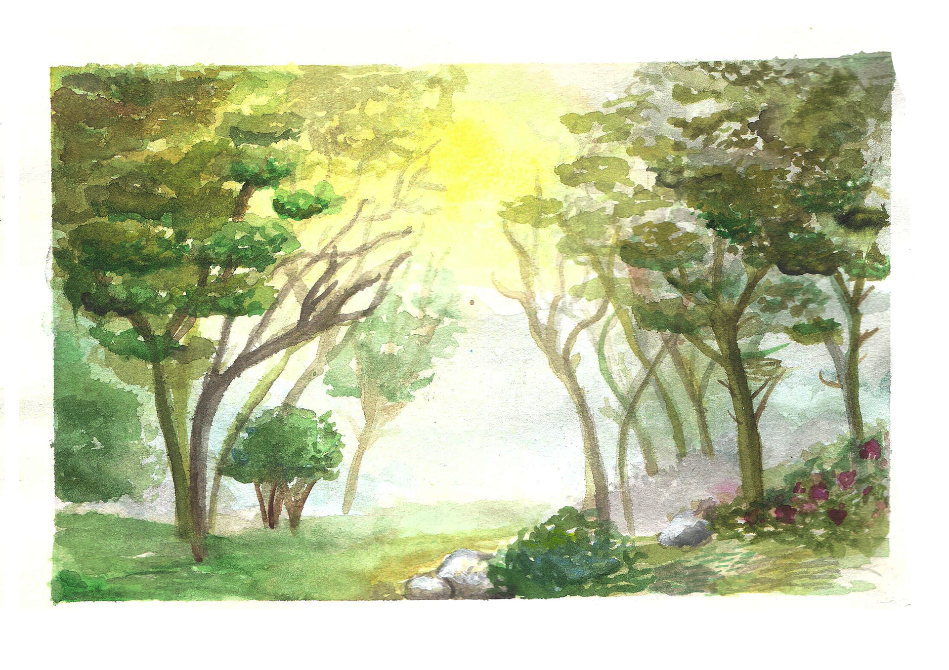 Summer Forest - Watercolour