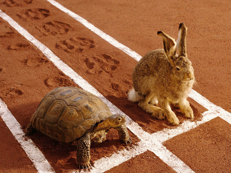 Rematch: the Tortoise and the Hare