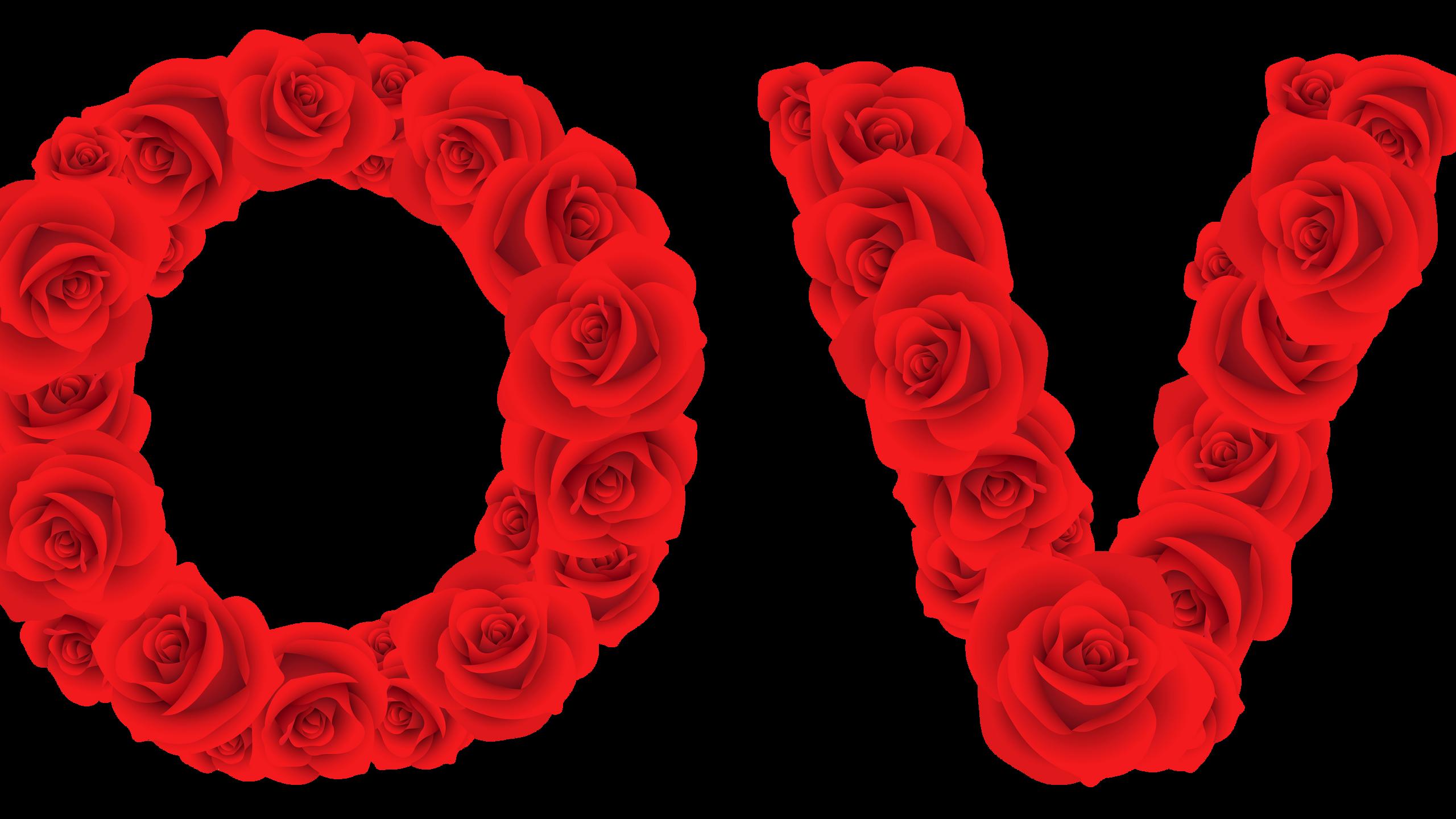 Love_of_Roses_Transparent_PNG_Clip_Art_Image