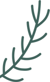 img-plant 2.png
