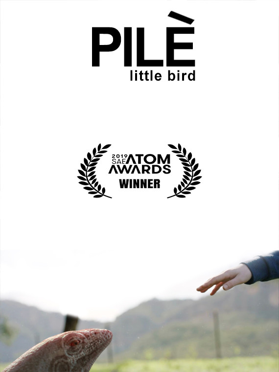 PILÈ (LITTLE BIRD)