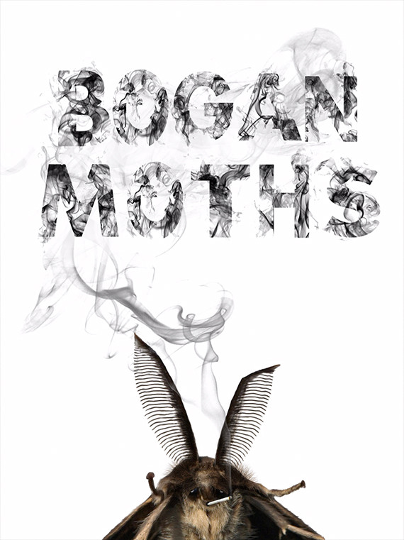 BOGAN MOTHS