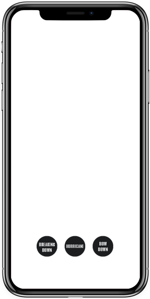iphone x Trauma with buttons.png