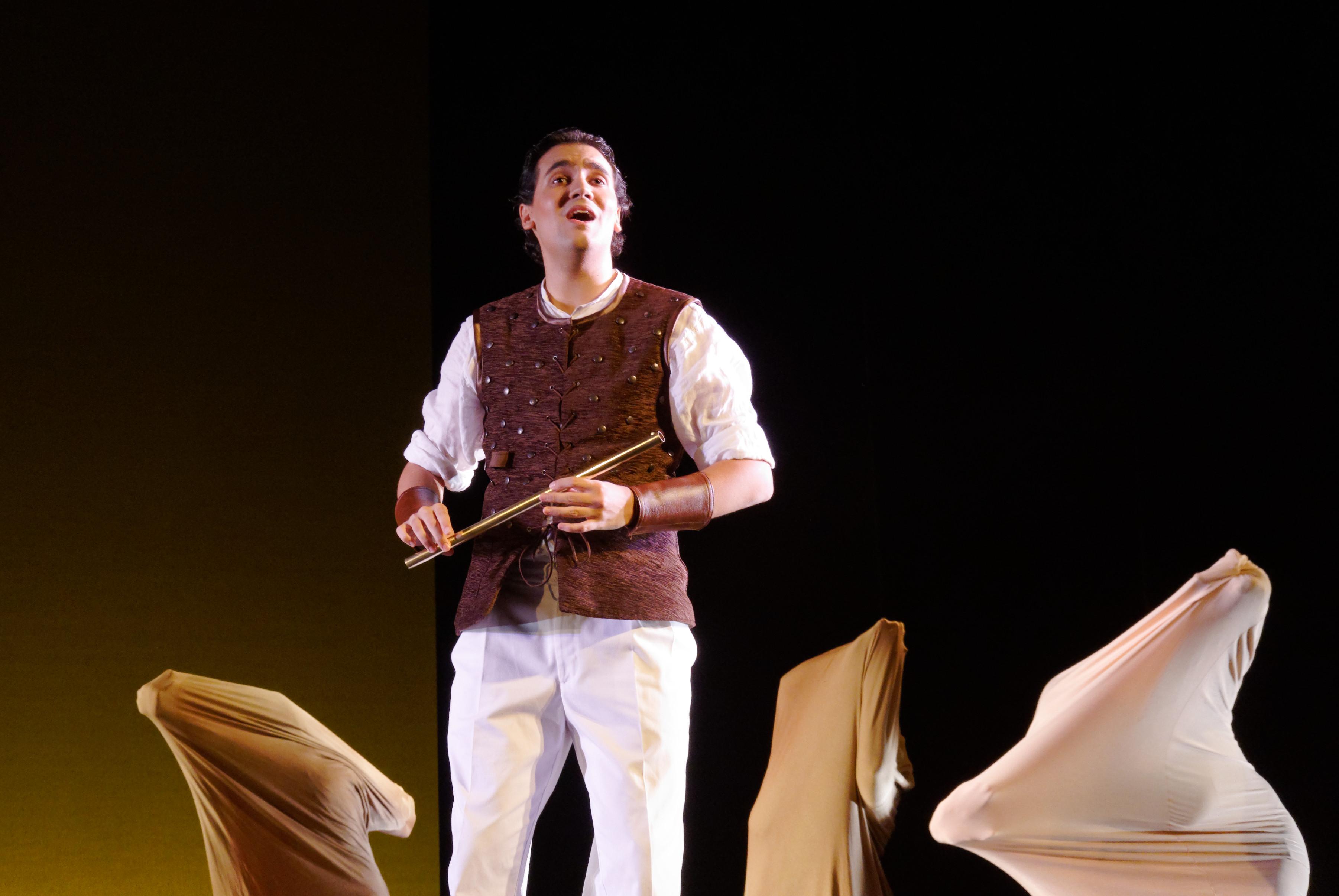 Tamino. Die Zauberflöte. 2013