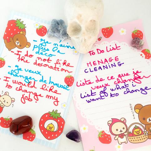 Nettoyez votre vie/Clean your life