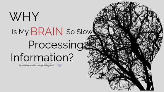 Why Is My Brain So Slow At Processing Information?