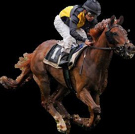 thoroughbred-horse-racing-jockey-horse-r