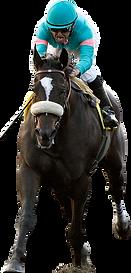 horse-racing-thoroughbred-jockey-horse-r
