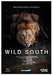06_wildsouth.jpg