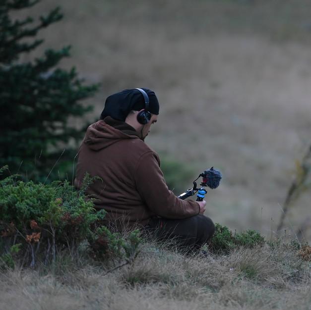 "Recording deer ""mating"" sounds"