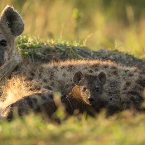Mom & Baby