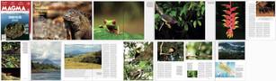 MAGMA Magazine Issue #16