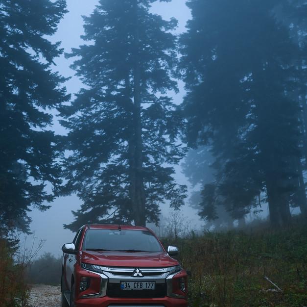 Misty trails