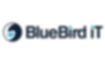 BlueBird_Print_01_Logo_Print (1)-03.png