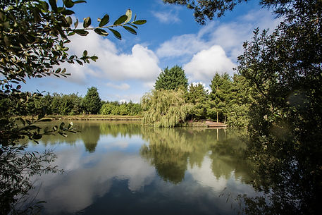 Lakeview lodge, Leicestershire.  Lodge rental with it's own private Carp fishing lake.