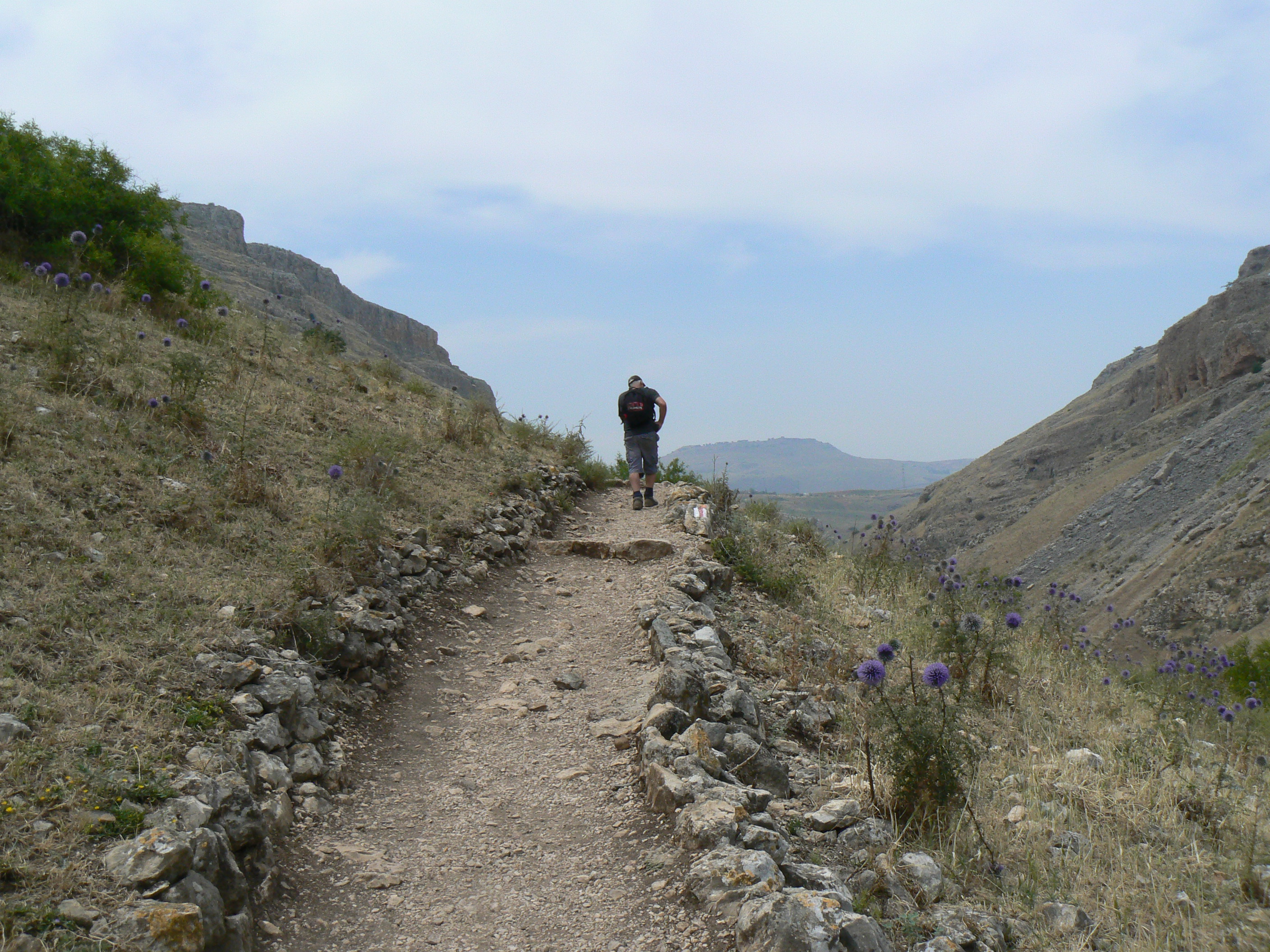 The Israel Hiking Trail