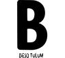 beso logo.png