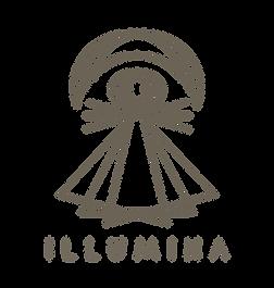 ILLUMINA1.png