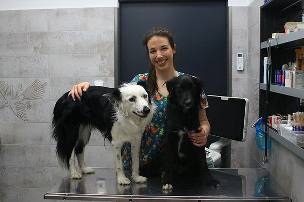 dr. Móritz Alma állatorvos Váci Állatkór