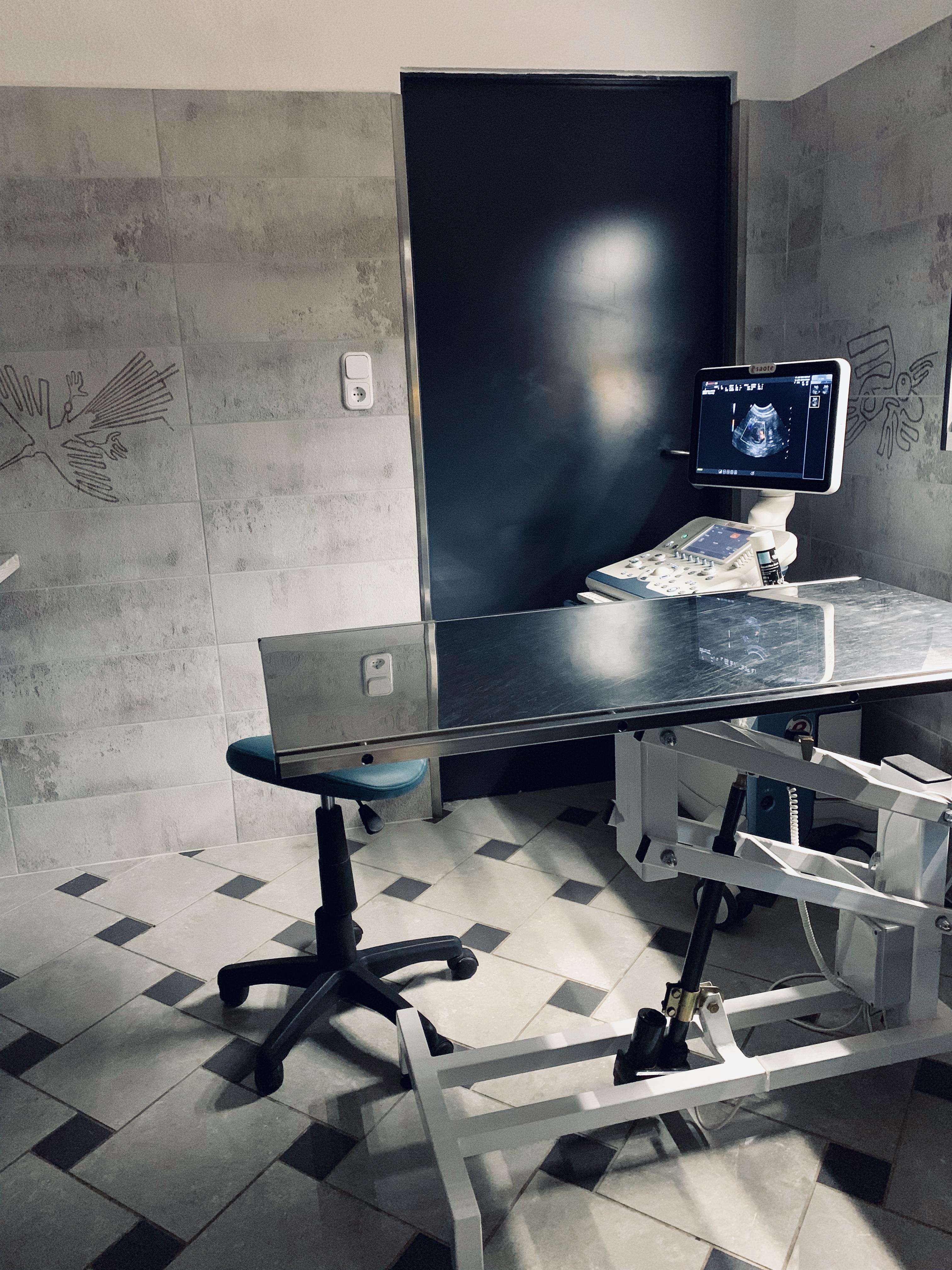 VáciÁllatkórház 3.JPG