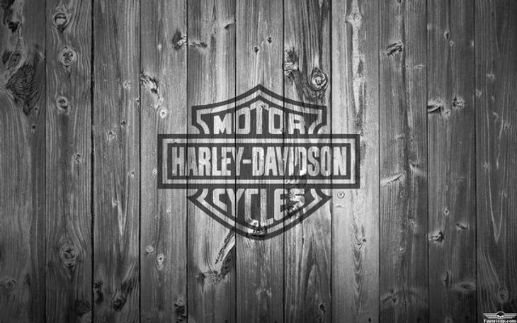 harley_davidson_logo_noir_background_wood_grey_by_favorisxp-d8lu9cm_edited.jpg