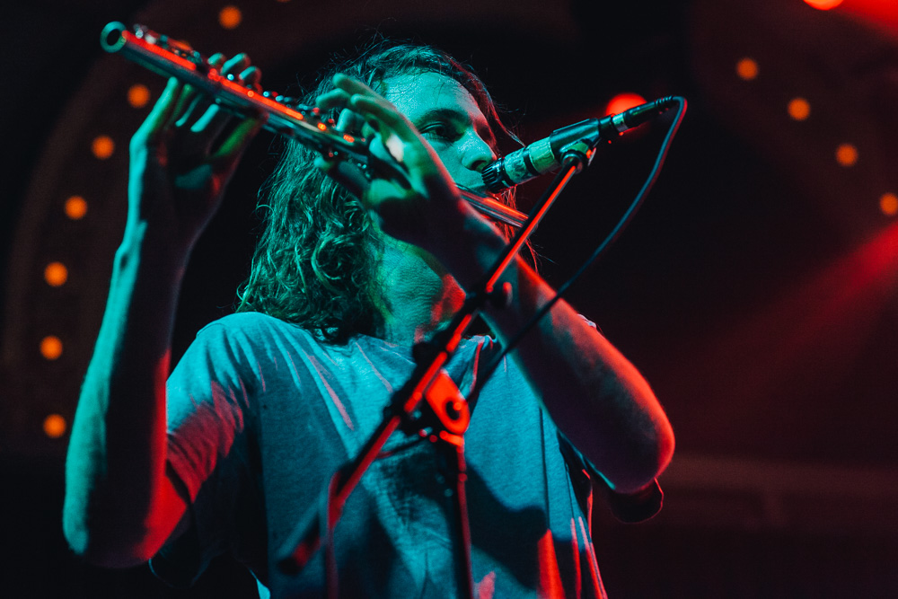 King Gizzard (13)