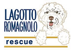 thumbnail_Lagotto_Rescue_Color (1).jpg