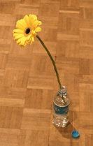 P1000191 flor editado.jpg