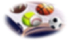 NLR logo oval.JPG