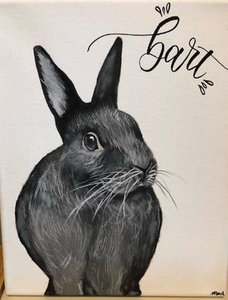 Bart the bunny