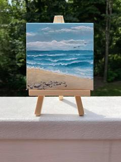 Beach mini