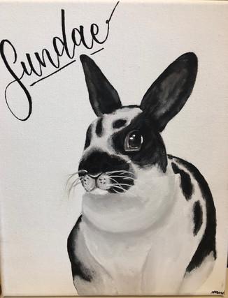 Sundae the Bunny