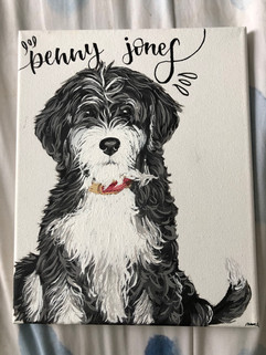 Penny the dog