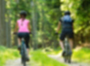 Bikers in forest cycling on track from b