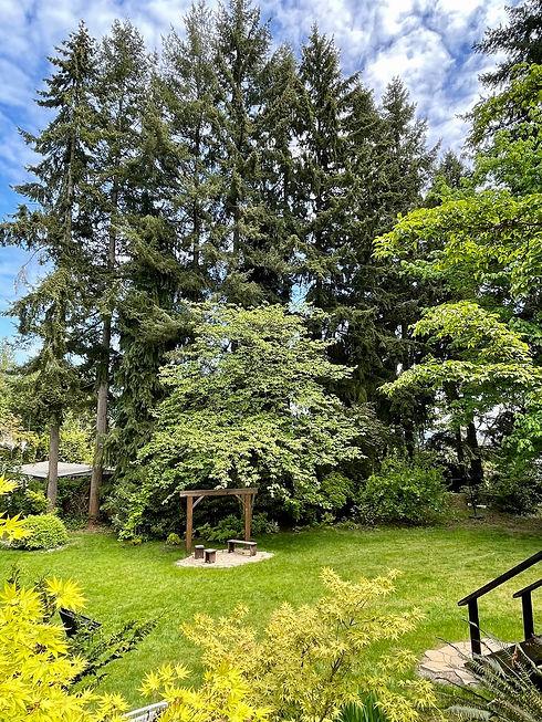Evergreen-Arbor-FranMo.jpg